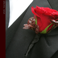 Flowers & Decor, red, Boutonnieres, Flowers, Boutonniere, Simply blooms