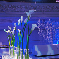 Reception, Flowers & Decor, white, blue, Lighting, Flowers, Got light