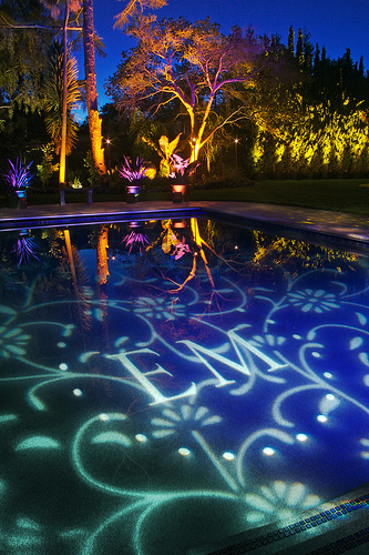 Reception, Flowers & Decor, blue, Lighting, Got light