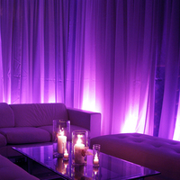 Reception, Flowers & Decor, purple, Lighting, Got light