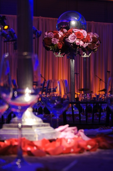 Reception, Flowers & Decor, pink, red, blue, Lighting, Got light