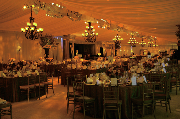 Reception, Flowers & Decor, Decor, gold, Lighting, Got light