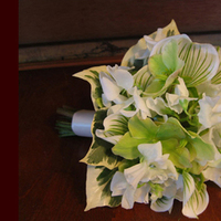 Flowers & Decor, white, green, Bride Bouquets, Flowers, Bouquet, Simply blooms