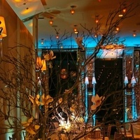 Reception, Flowers & Decor, gold, Lighting, Got light
