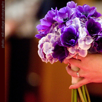 Flowers & Decor, purple, Bride Bouquets, Flowers, Bouquet, Simply blooms