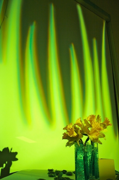 Reception, green, yellow, Lighting, Got light, Flowers & Decor