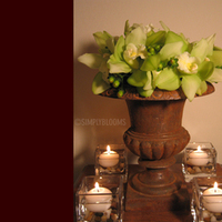 Flowers & Decor, green, brown, Candles, Flowers, Simply blooms