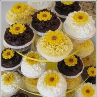 Cakes, yellow, brown, cake, Sweet traders