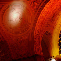 Reception, Flowers & Decor, red, Lighting, Got light