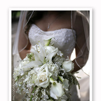 Flowers & Decor, Photography, white, Flowers, Liz edlund photographs