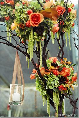 Reception, Flowers & Decor, orange, Flowers