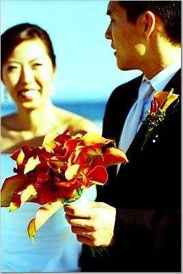 Flowers & Decor, orange, Flowers, Us
