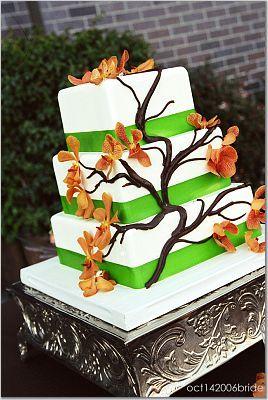Cakes, orange, green, cake