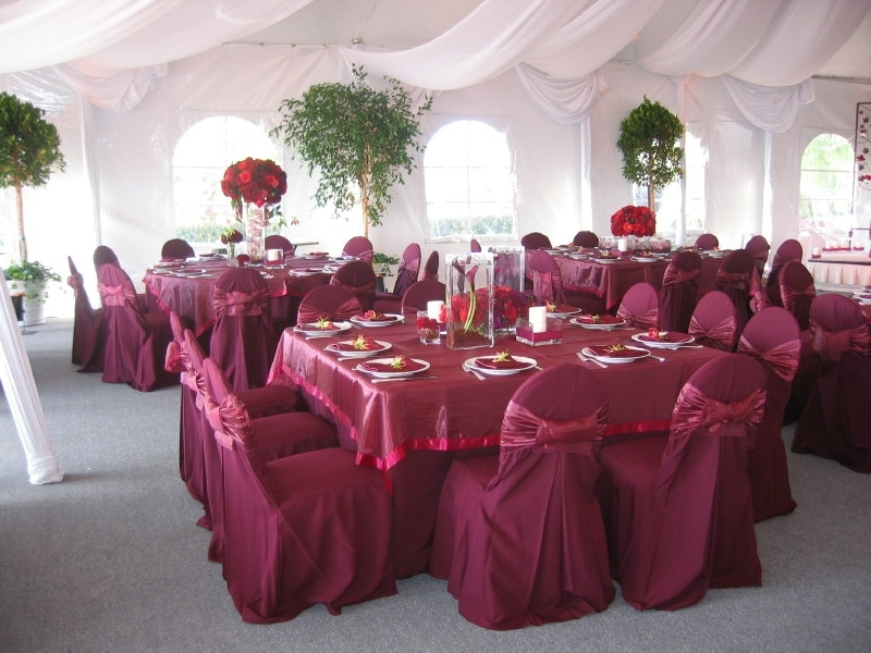 Reception, Flowers & Decor, Of, Site, Tent, At, In, Hill, Former, Pelican