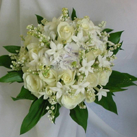 Bouquet, Masseys house of flowers, Handtied, Lily