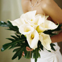 white, Bouquet, Calla lily, Masseys house of flowers