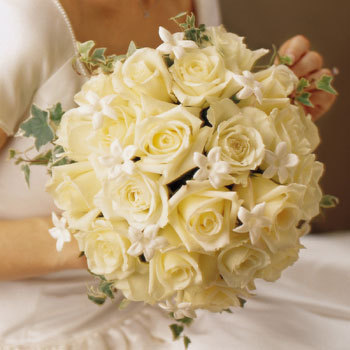 Flowers & Decor, white, Bride Bouquets, Flowers, Roses, Bouquet, Masseys house of flowers