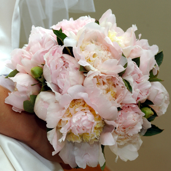 white, pink, Bride Bouquets, Bridesmaid Bouquets, Classic Wedding Flowers & Decor