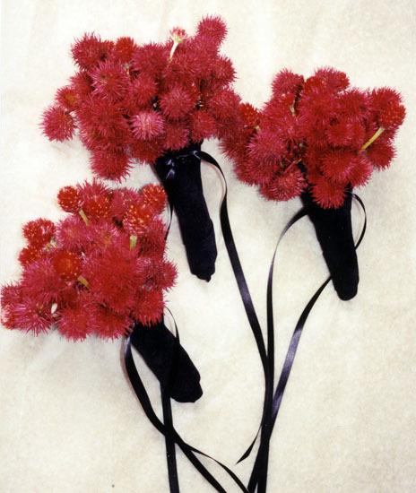 Flowers & Decor, red, Boutonnieres, Flowers, Boutonniere