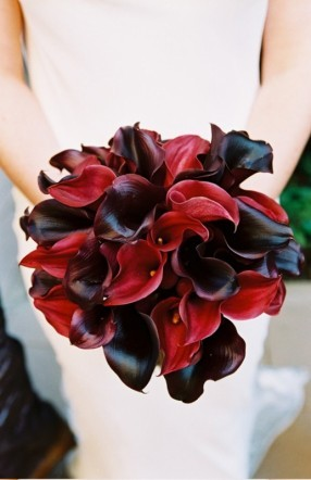 Flowers & Decor, red, brown, Bride Bouquets, Flowers, Bouquet