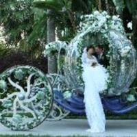Pennyrella weddings