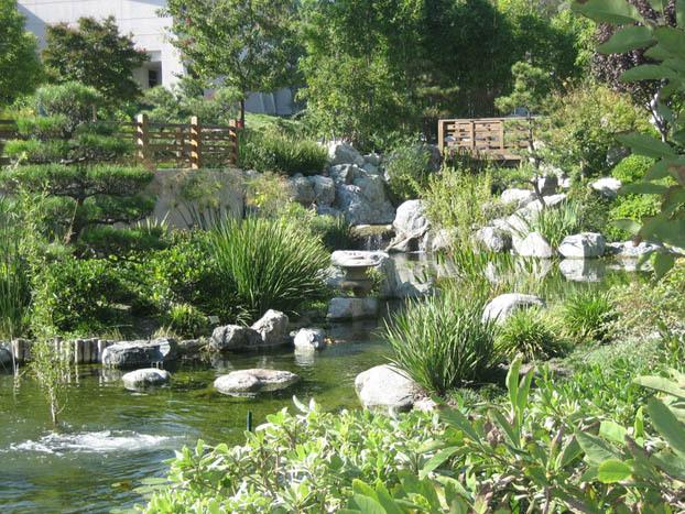Flowers & Decor, Garden, Japanese, George and sakaye aratani japanese garden, Aratani