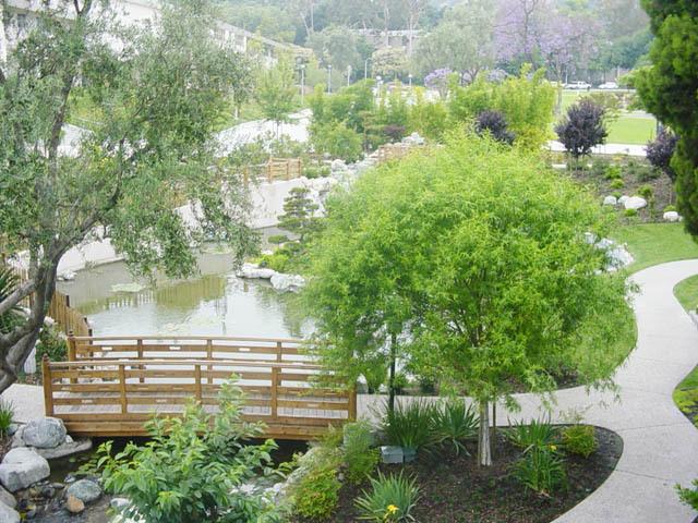 Flowers & Decor, Garden, Japanese, George and sakaye aratani japanese garden