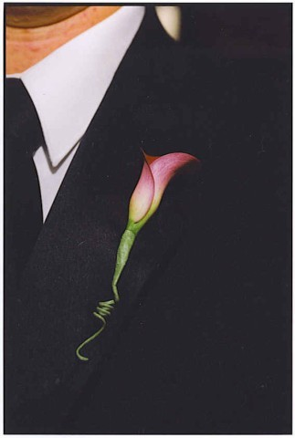 Calla, Boutonnierre, Lilly