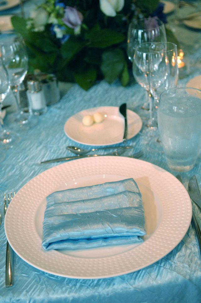blue, Napkin, Fusion linens, Tablecloth