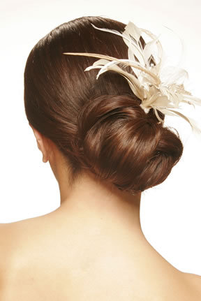 Beauty, Chignon, Feathers