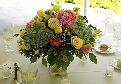 Flowers & Decor, yellow, Flowers, Black eyed suzies