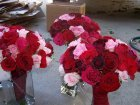 Flowers & Decor, pink, red, Flowers, Bouquets