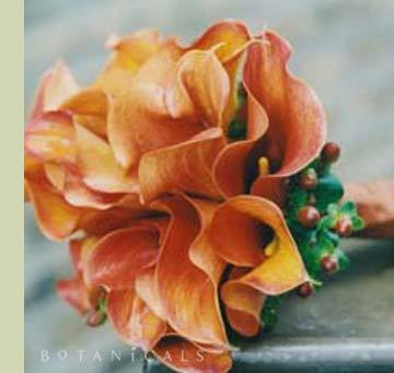 Flowers & Decor, orange, Bride Bouquets, Flowers, Bouquet, Botanicals