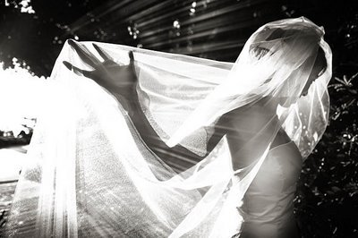 Veils, Photography, Fashion, Veil