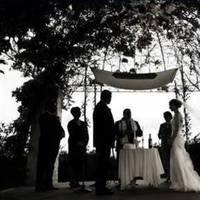 Veils, Photography, Fashion, Veil