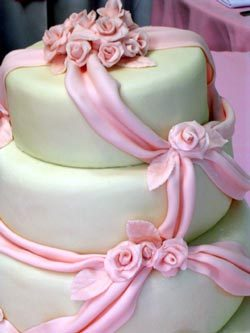 Dianes designer cakes