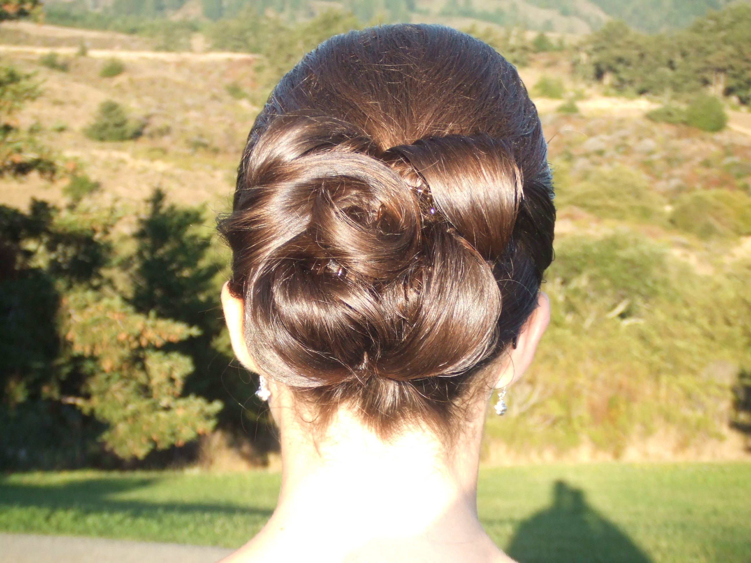 Beauty, Chignon