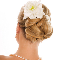 Beauty, Hair, Milvali salon cosmetics, Blonde