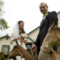 Bride, Groom, And, Rebecca wilkowski photography