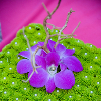 Flowers & Decor, Flowers, Rebecca wilkowski photography