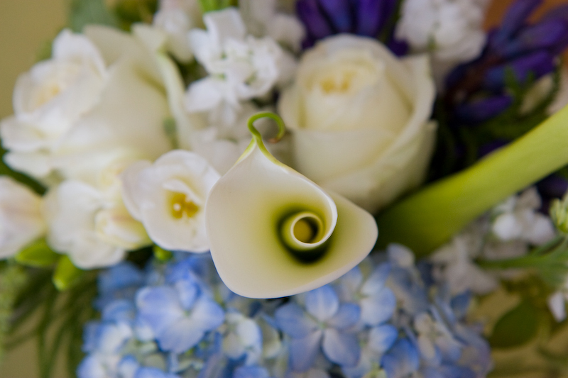 Flowers & Decor, white, blue, Flowers, Calla, Kali kraum photography