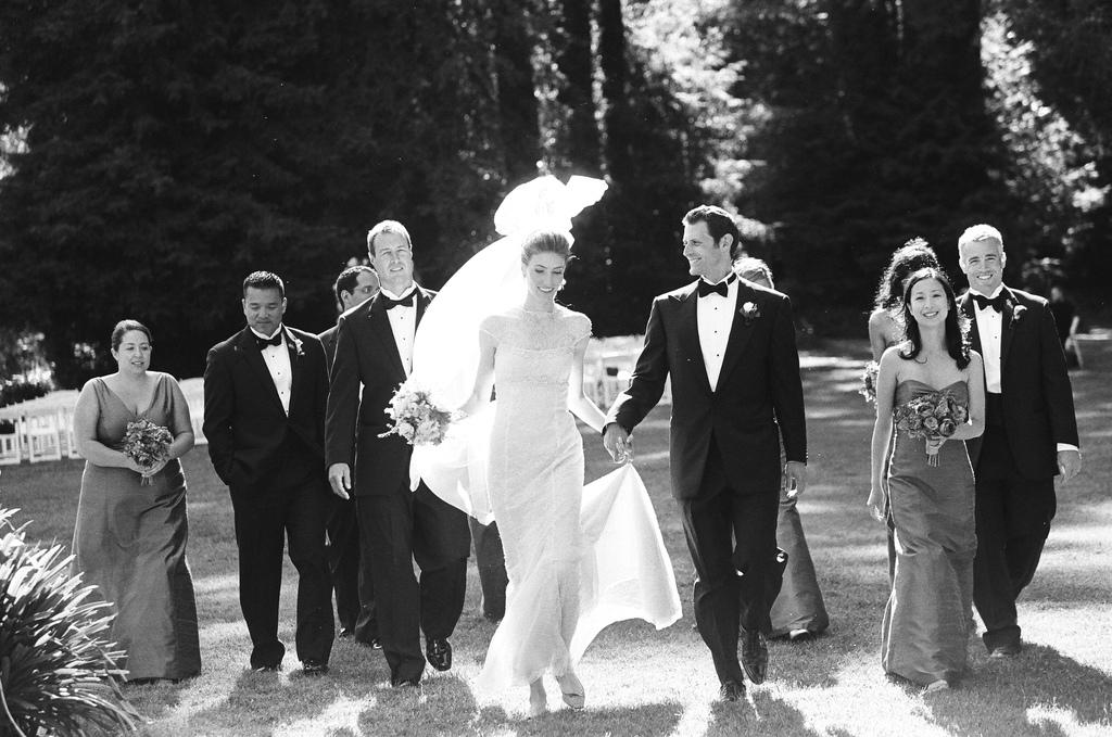 Bridesmaids, Bridesmaids Dresses, Wedding Dresses, Veils, Fashion, dress, Veil