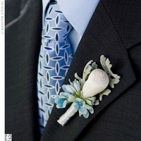 Flowers & Decor, Beach, Boutonnieres, Flowers, Beach Wedding Flowers & Decor, Boutonniere