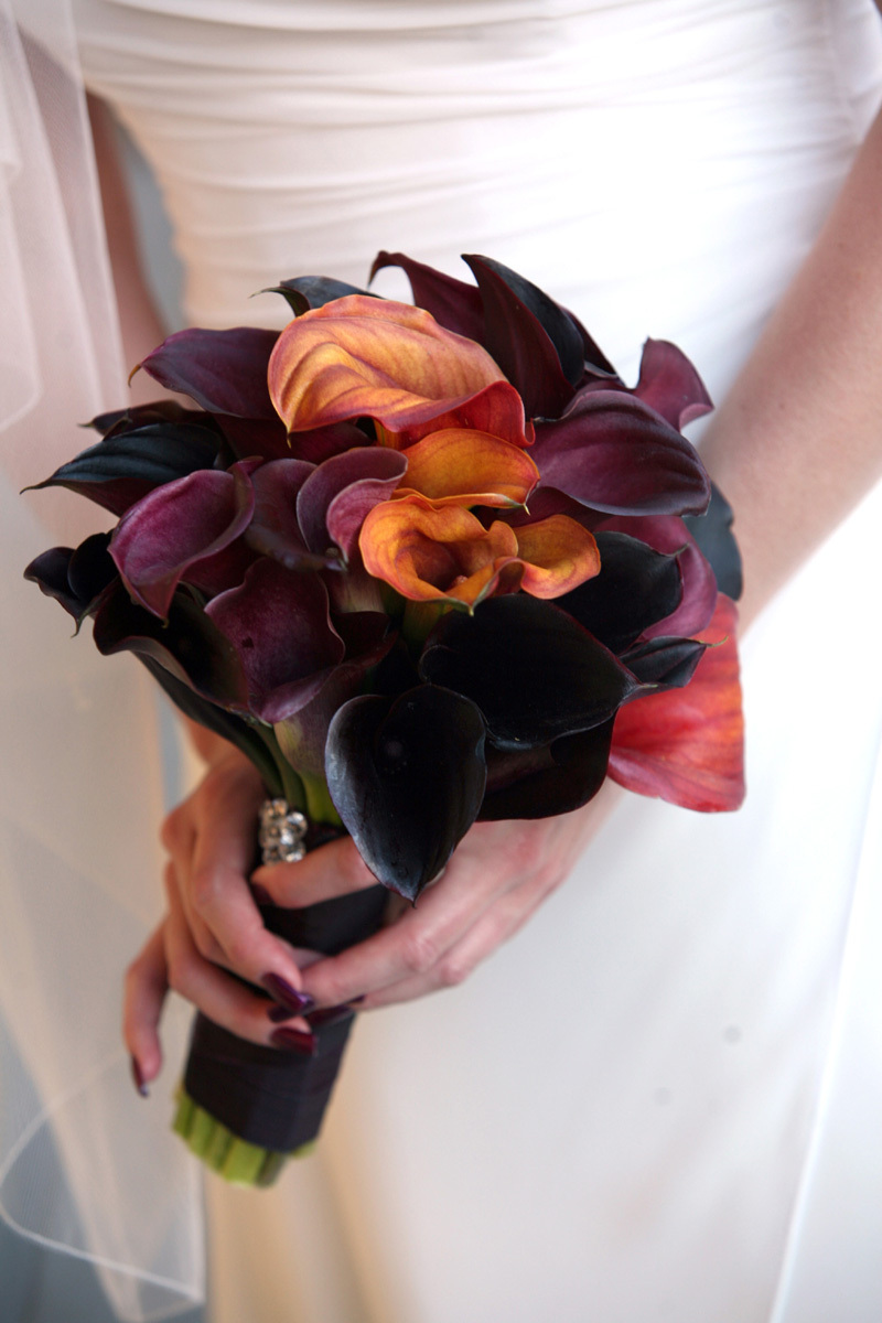 purple, Bouquet, Wine country flowers