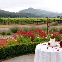 Enchanted weddings wine country elopements