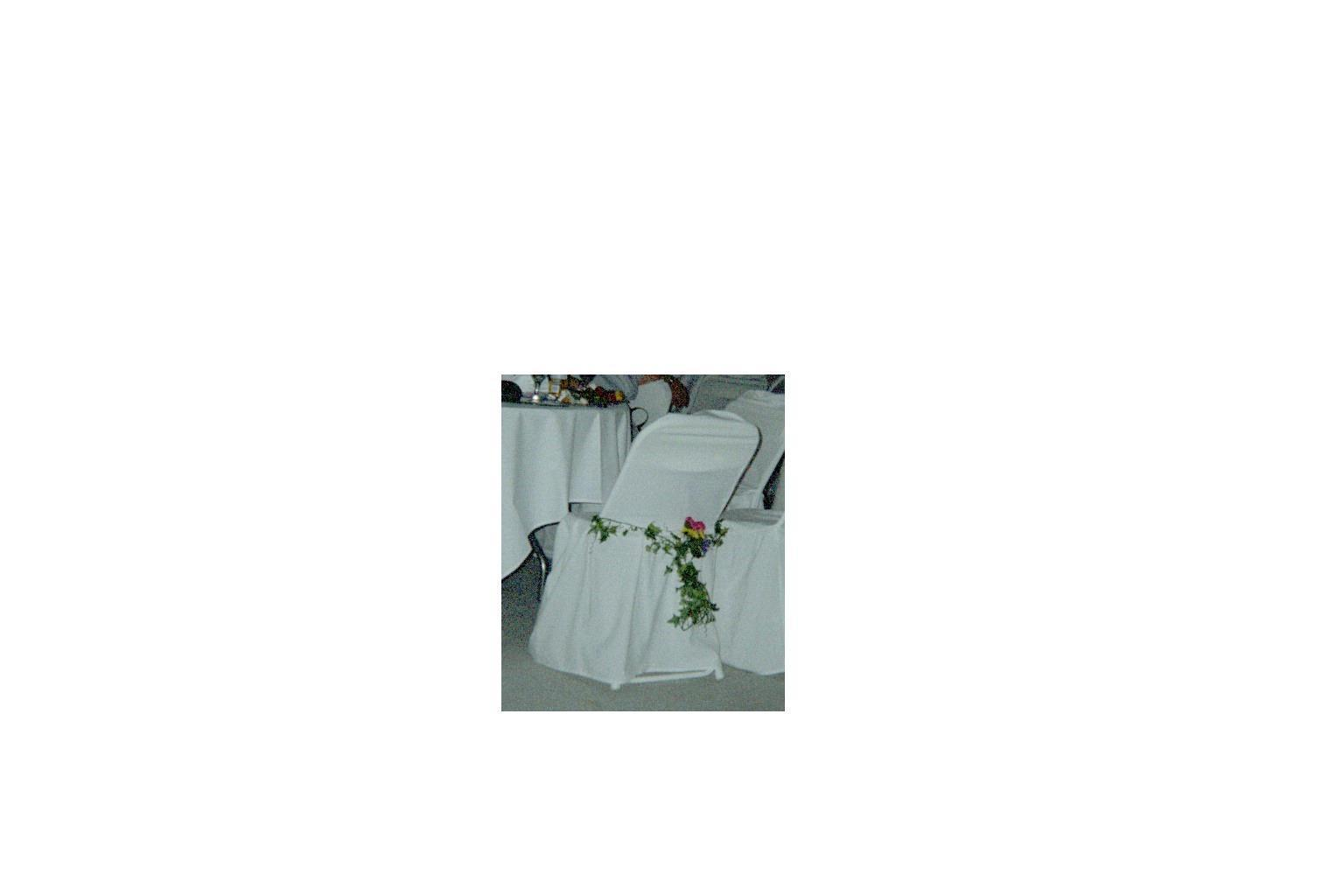 Reception, Flowers & Decor, Chair covers