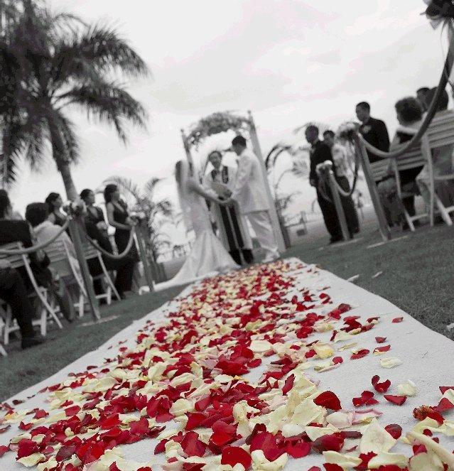 Destinations, Bride, Wedding, Hotel, Destination, Weddings, Hawaiian, Royal, Story, Love, Oahu