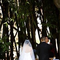 Ceremony, Flowers & Decor, Veils, Fashion, Veil