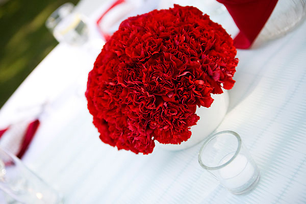 Reception, Flowers & Decor, Decor, Centerpieces, Centerpiece, Aqua and red, Carnations