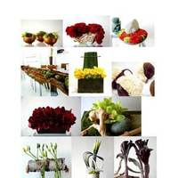 Flowers & Decor, red, green, Modern, Flowers, Modern Wedding Flowers & Decor, Inspiration board